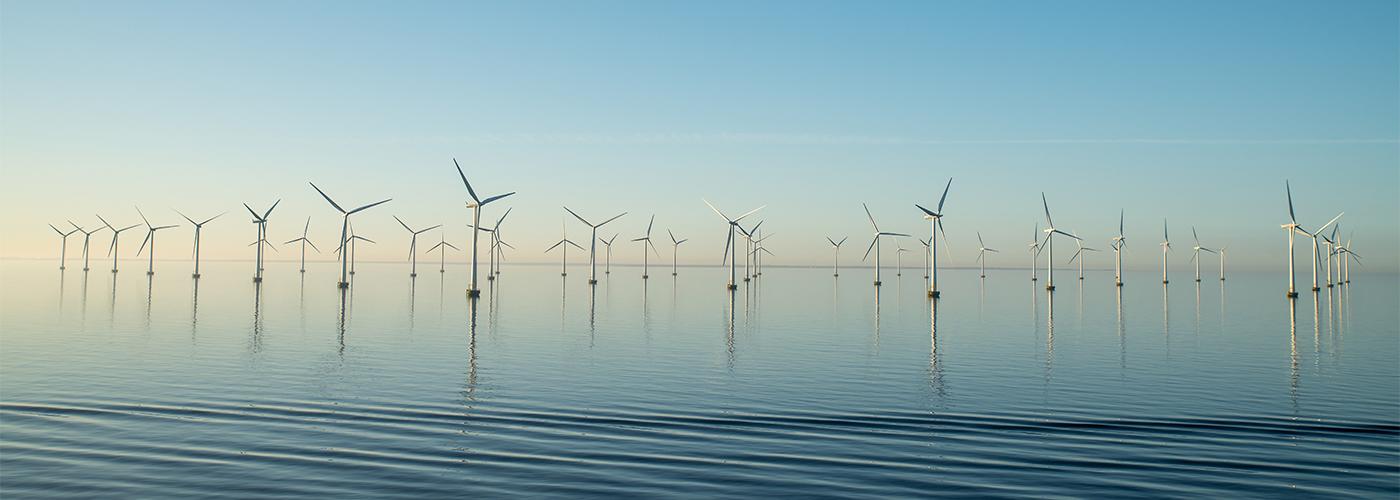 wind-mills-water-plants-sustainability